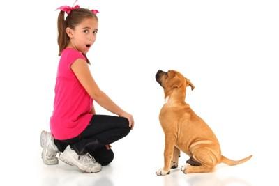 しゃがむ女の子と犬