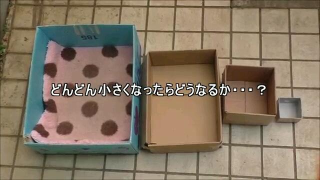 並べられた箱
