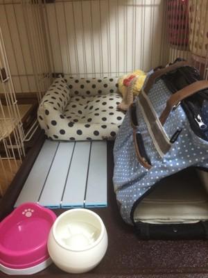 ケージの中の犬用ベッド