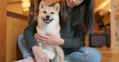 柴犬と女性