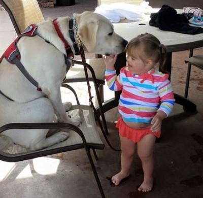 椅子に座る犬と少女