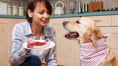 飼い主と肉