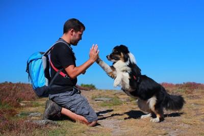 犬との信頼関係