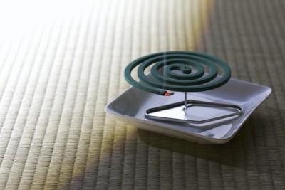畳に置かれた蚊取り線香