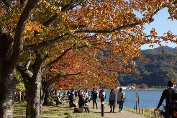 紅葉の湖畔散策路