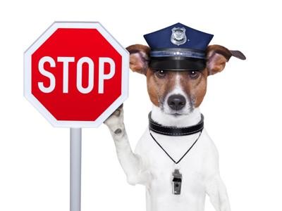 STOPの看板と警察の犬