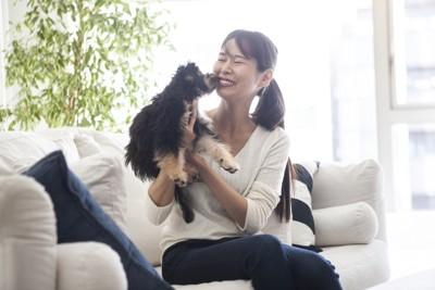 ソファーに座る女性と長毛の子犬