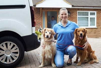 2頭の犬と女性