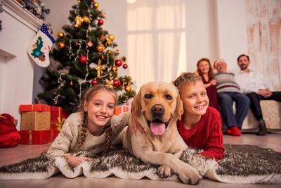 部屋で家族とくつろぐ犬