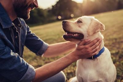 笑顔で見つめ合う男性と犬