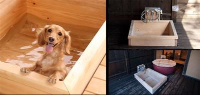 はんなり伊豆高原の犬の浴室