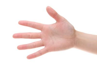 広げられた人の手