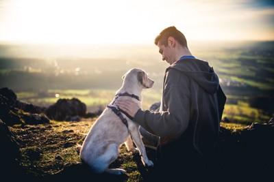 落ち着いて接する人と犬