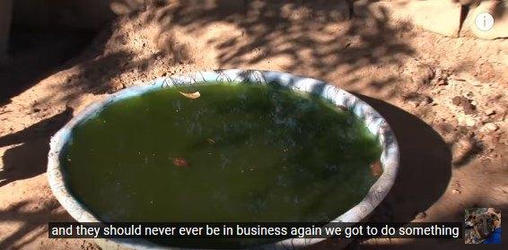 深緑色の水