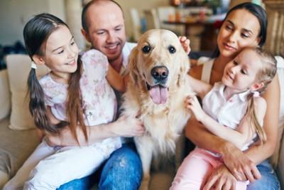 ソファーで犬を可愛がる家族