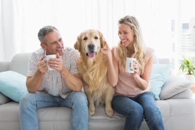 ソファーに座るカップルとゴールデンレトリーバー