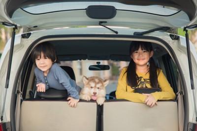 車の中の子供たちと子犬