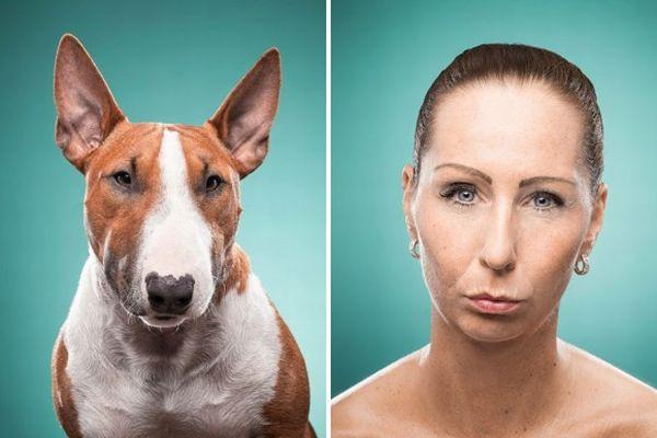 飼い主の顔に似た犬