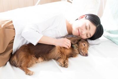 飼い主のそばで寝る犬