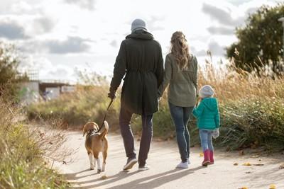 家族と散歩を楽しむ犬の後ろ姿
