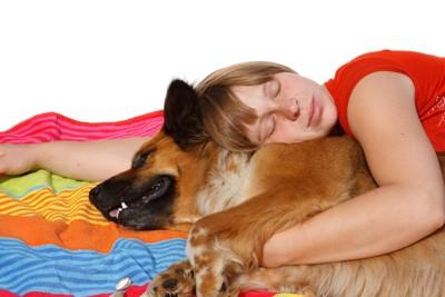 女性に抱きしめられて眠る犬
