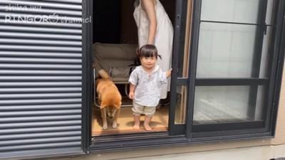 赤ちゃんたち