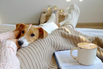 飼い主の足の間でリラックスする犬