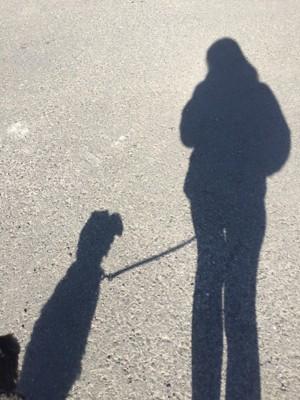 飼い主と犬の影
