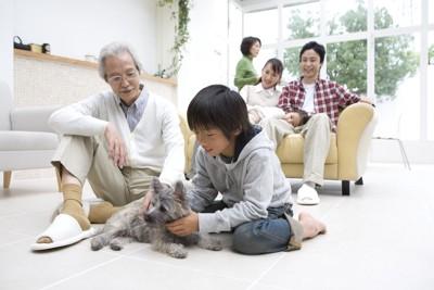 犬と家族が家の中で遊んでいる