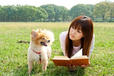 ペットシッターの勉強中の人と犬