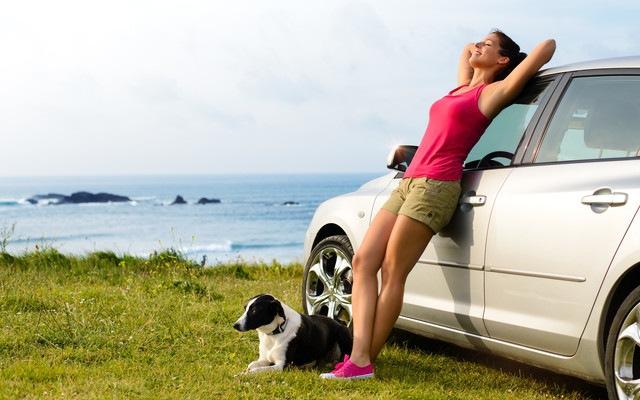 女性とボーダーコリーと自動車