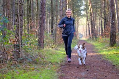 軽くジョギングする飼い主と犬