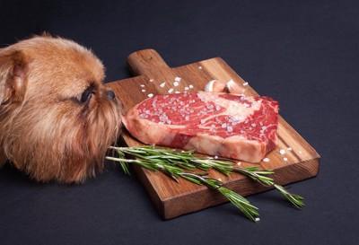 まな板の上の肉を見つめる犬