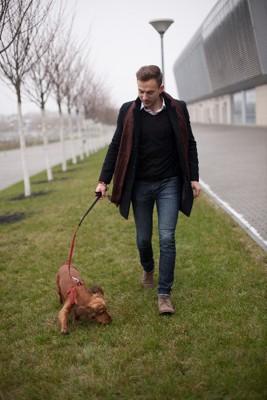 男の人と散歩するダックス