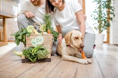 いろんな野菜を食べる犬