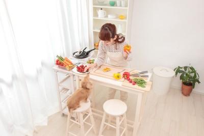 犬に野菜をあげる女性
