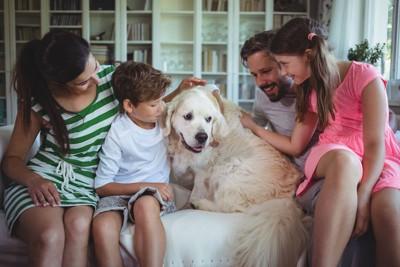 ソファーで寄り添う家族と犬