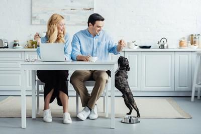 立ち上がる犬と夫婦