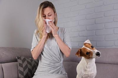 鼻をかむ女性と首をかしげた犬