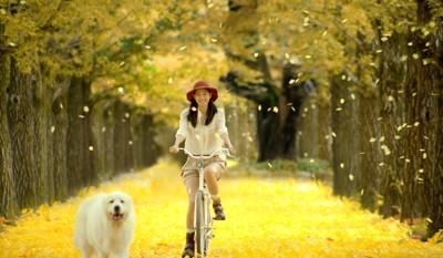 自転車の女性と犬