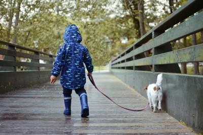 レインコートで散歩する子ども