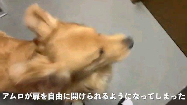 アムロが~字幕