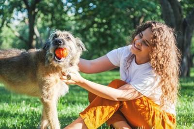 ボールで遊ぶ犬と女性