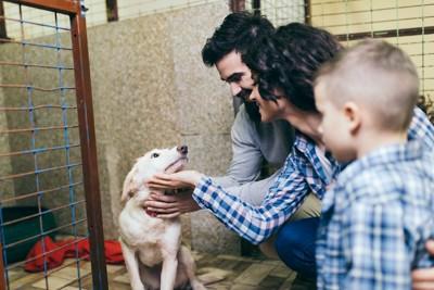 シェルターで犬と触れ合う家族