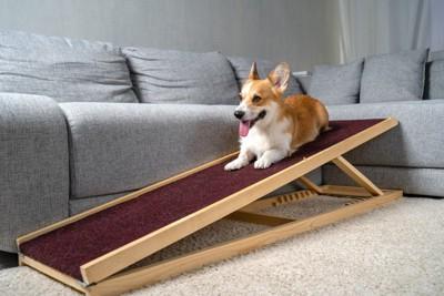 犬用のソファー用スロープ