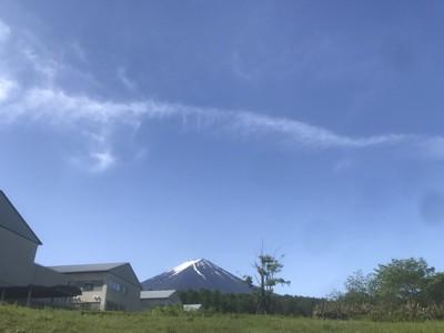 散歩コースからの富士は絶景