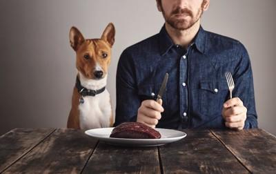 ステーキを食べようとする男性と犬