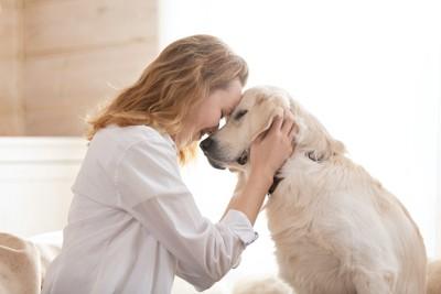 目を閉じて額をくっつけ合う女性と犬