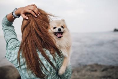 海を眺める女性に抱かれているポメラニアン