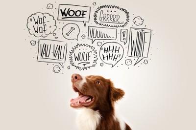 口を開ける犬と様々な鳴き声の文字